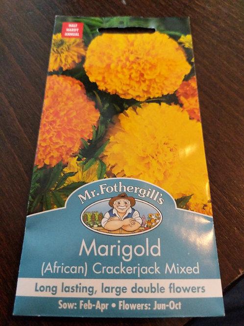 Marigold crackerjack mixed