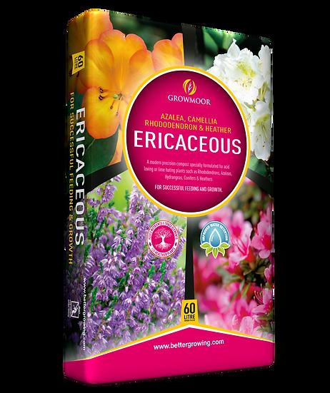 ERICACEOUS COMPOST (2 60l bag)