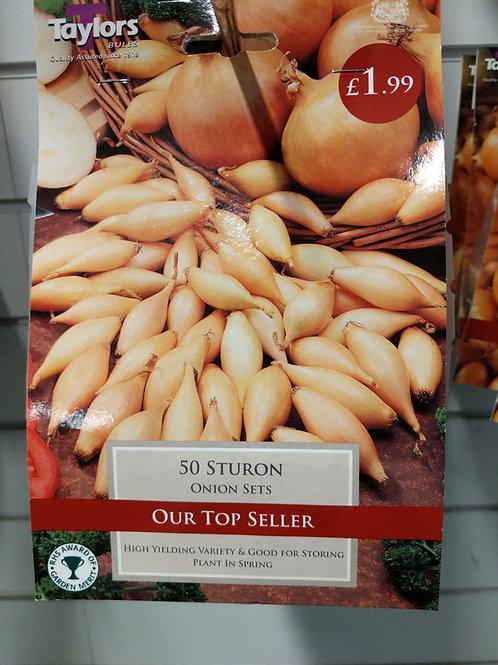 Sturon Onions