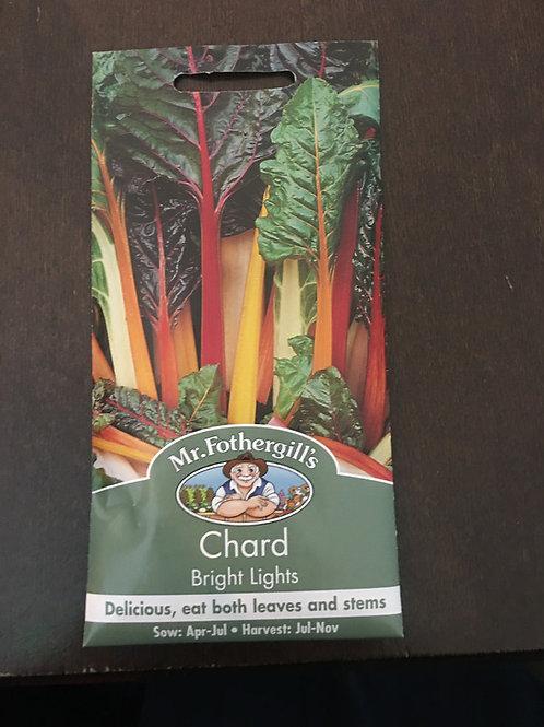 Chard bright lights
