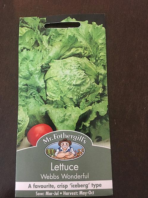 Lettuce Webb�s wonderful