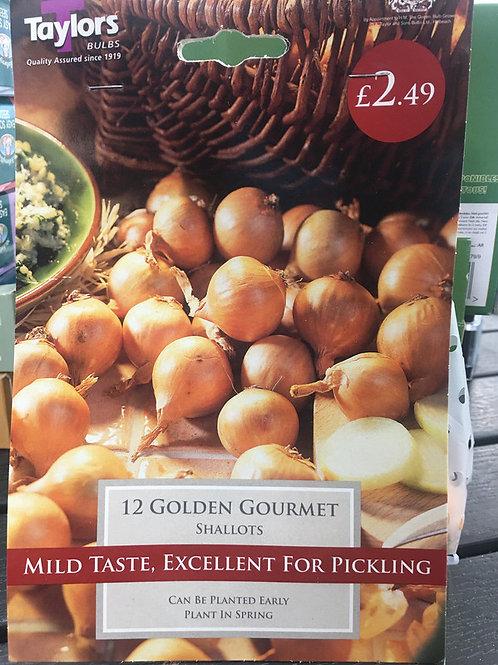 Golden Gourmet Shallots
