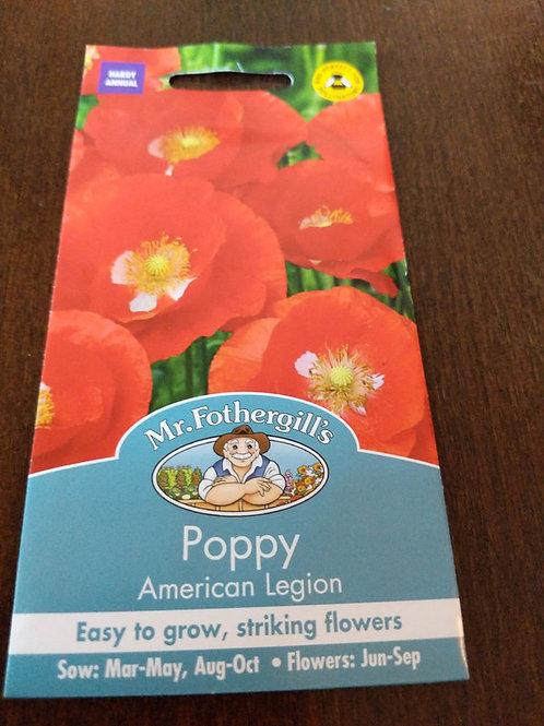 Poppy American legion