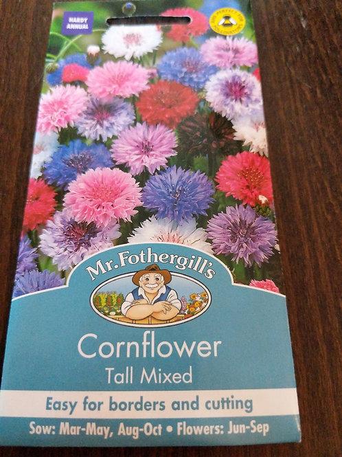 Cornflower Tall Mixed