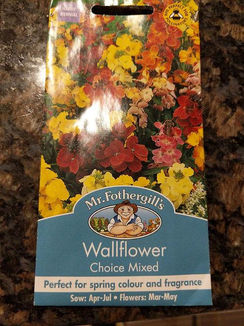 Wallflower Choice Mixed