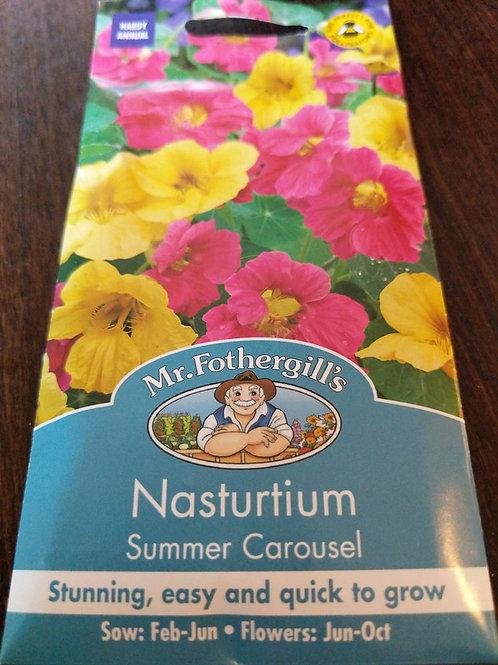 Nasturtium summer carousel