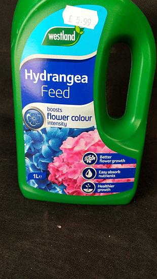 Hydrangea Feed