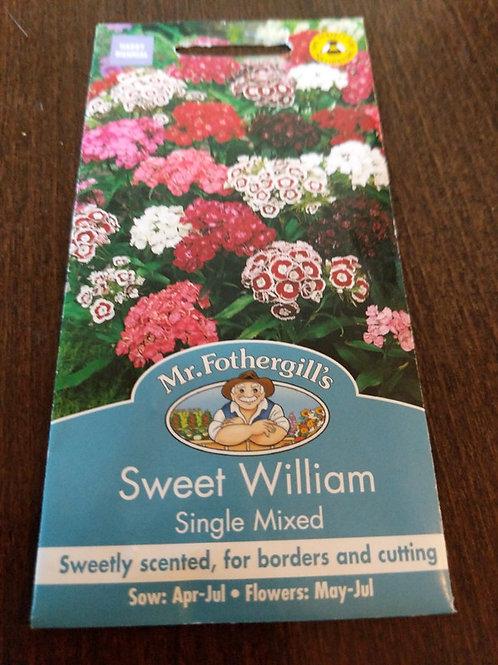Sweet William single Mixed