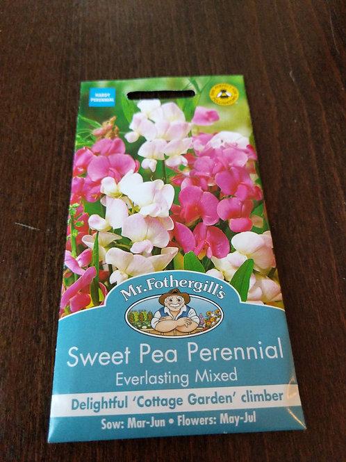 Sweet pea perennial everlasting mixed