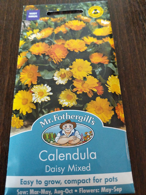 Calendula Daisy Mixed