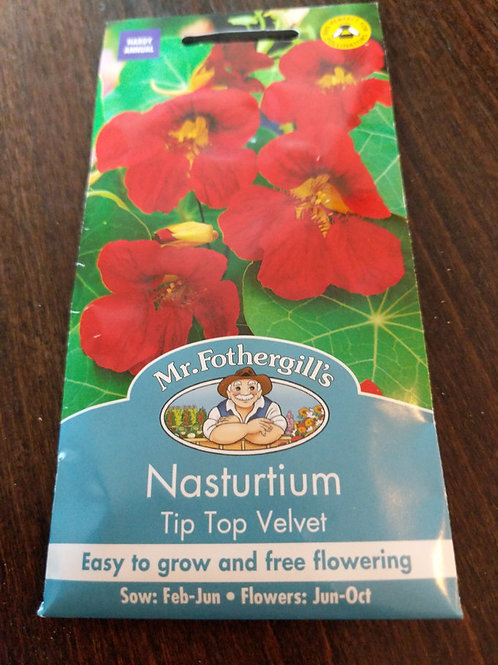 Nasturtium tip top velvet