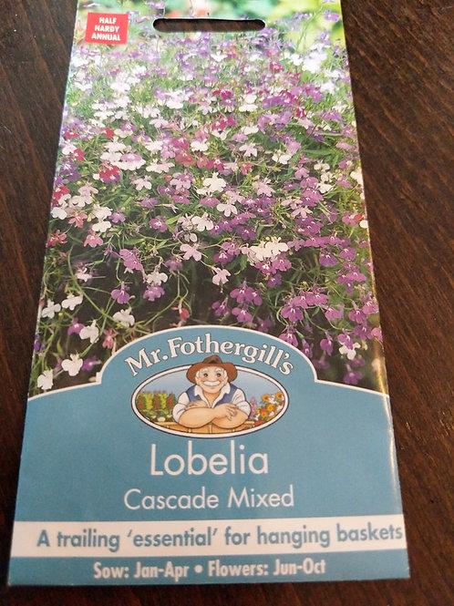 Lobelia cascade mixed