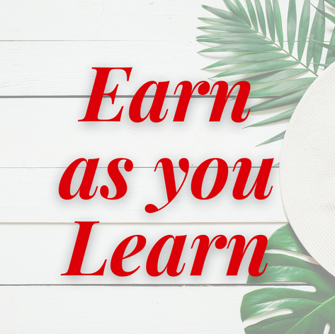 Earn as you Learn.png