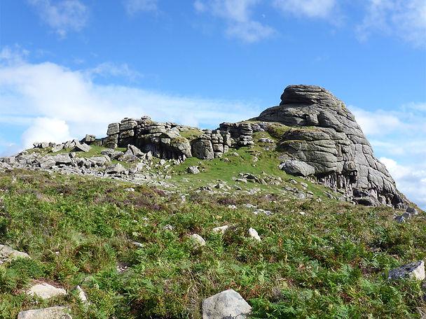 haytor-rocks-ferns.jpg