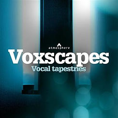 VOXSCAPES.jpg
