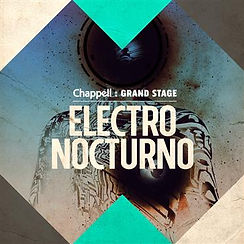 ELECTRO NOCTURNO.jpg