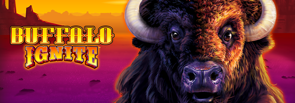 Top Banner_Buffalo Ignite.png
