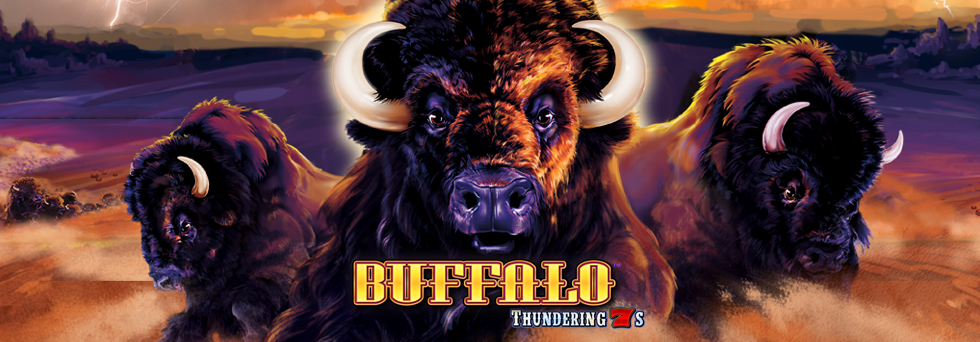 Top Banner_Buffalo Thundering 7s.png
