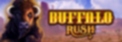 Top Banner_Buffalo Rush.png