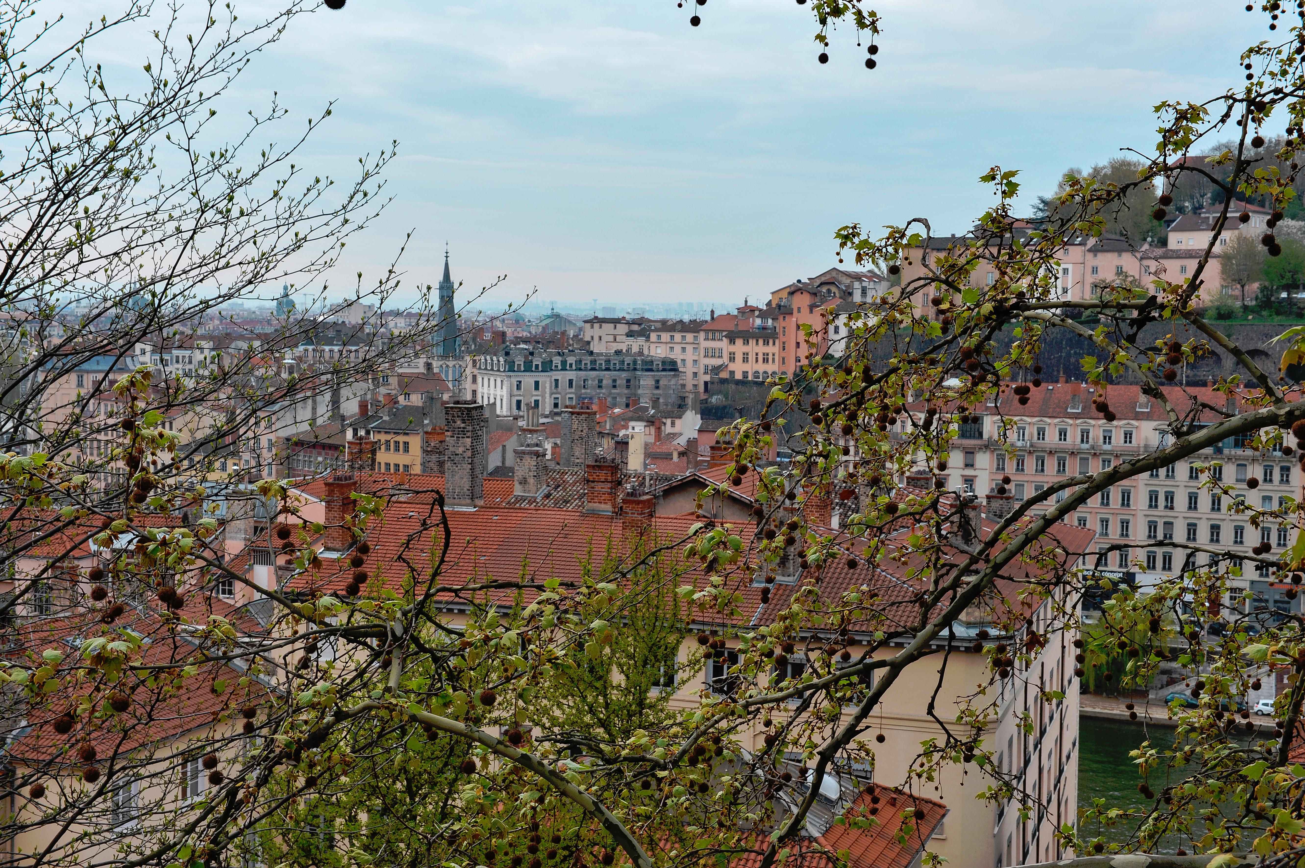 Lyon006