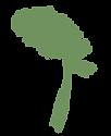 folha tag verde.png