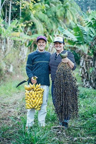 agrofloresta açaí