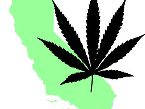 Ending Cannabis Prohibition in California