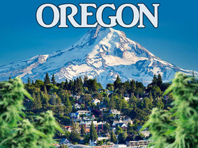 Oregon's Marijuana Banking Industry