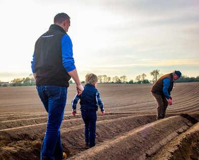 Meade Farm Growing 17