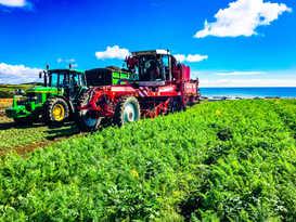 Meade Farm Growing 6