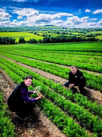 Meade Farm Growing 24