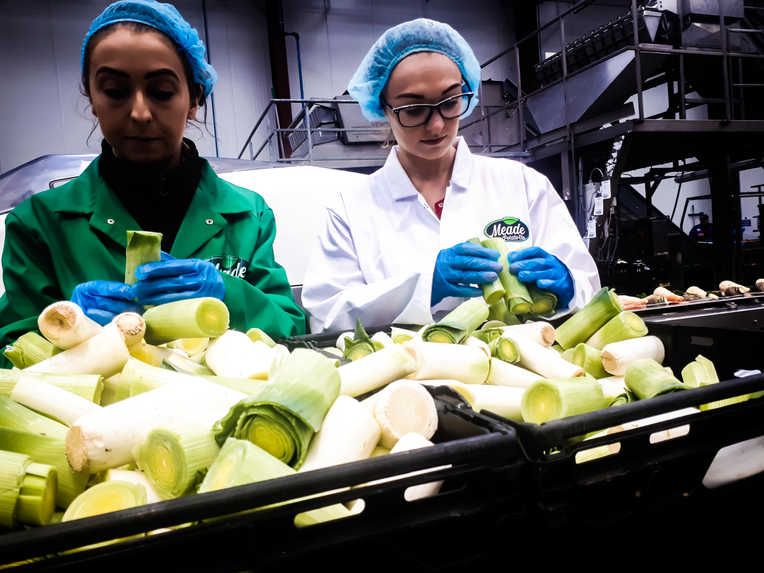 Meade Farm Quality Assurance Team 1