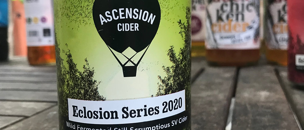 Ascension - Eclosion  7.3 %