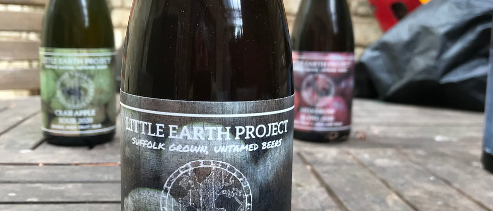 Little Earth Project Blueberry  Sour  5.3%