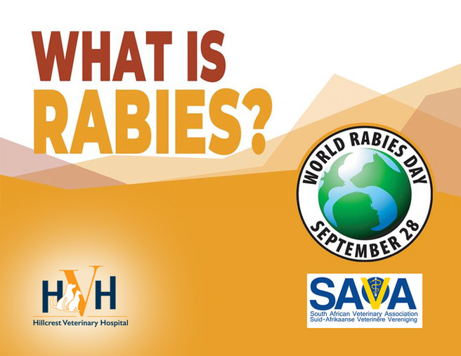 RABIES!  Vaccination not procrastination ends rabies.