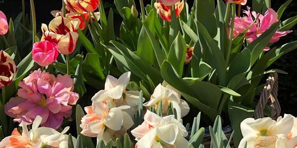 Open tuin op afspraak april
