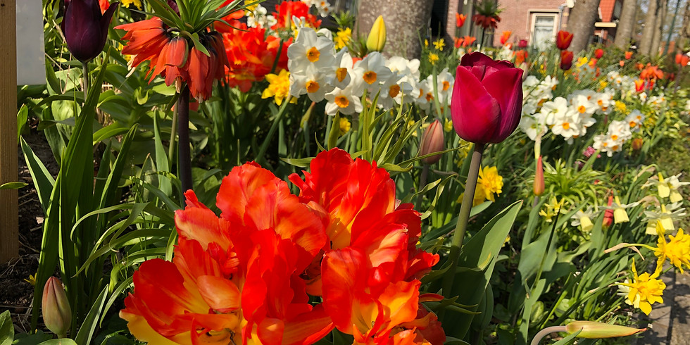 Opentuin weekend april