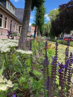 Voor tuin Dorpsstraat 62