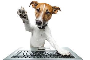 Computer Dog 1.jpg