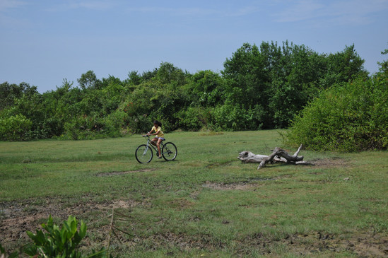 Cycling in reservation bordering the pro