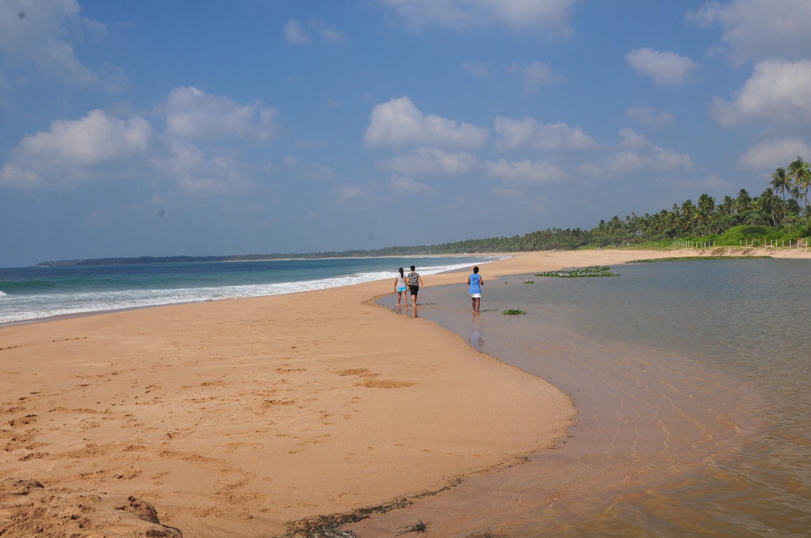 Beach walks.JPG