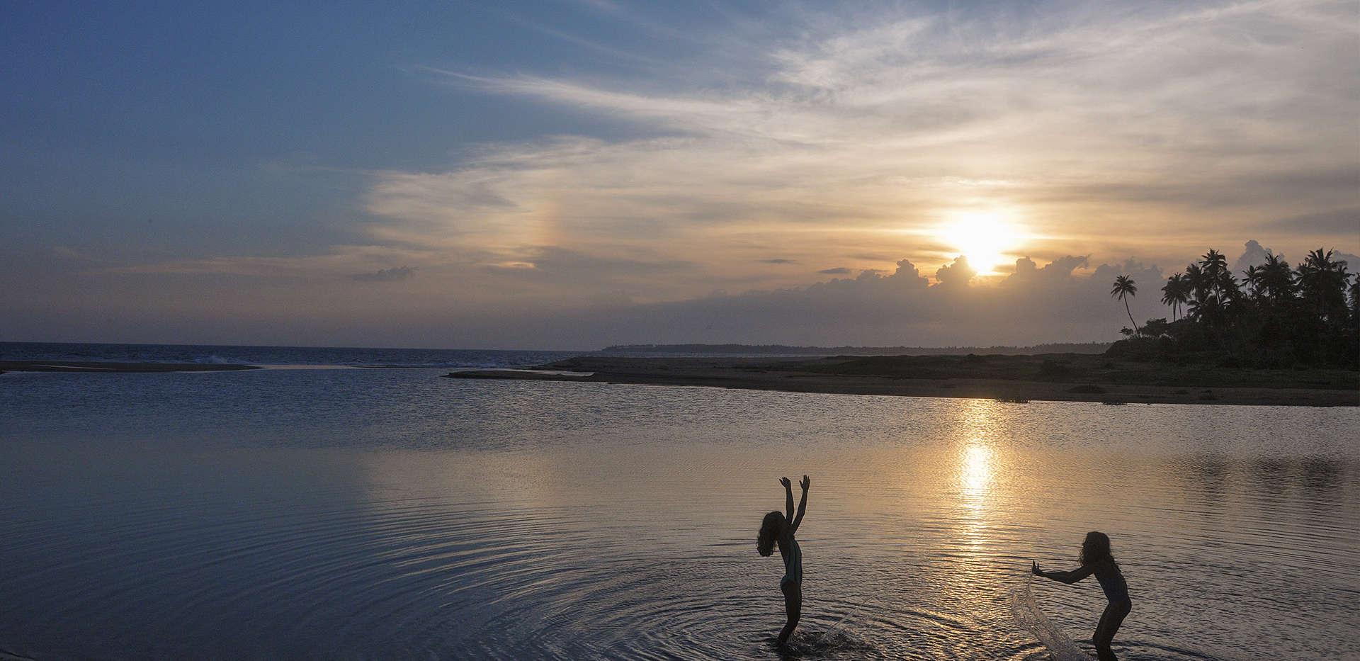 Evening dips in the quiet river inlet