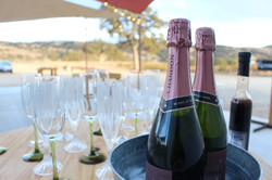 Champagne to Start