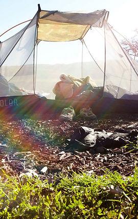 Camping at Pianetta Winery