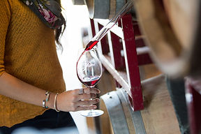 Pianetta Winery Tours and Barrel Tasting