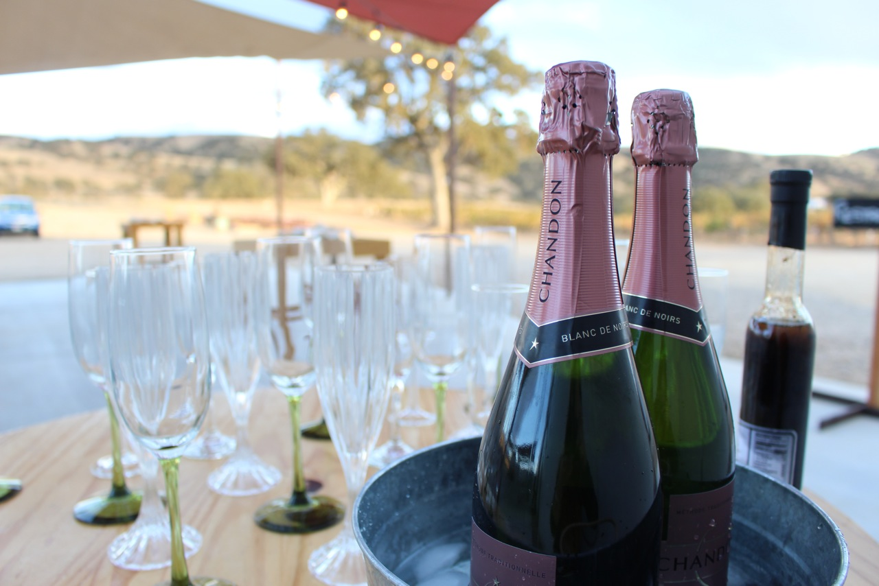 Champagne to start? Yes, please!