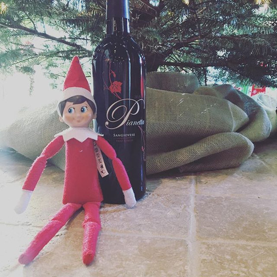 Meet Pianetta's Elf on the Shelf - Emilio
