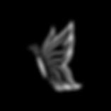 icons yaron-41.png