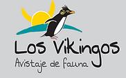 logo_v_t - Chantal Torlaschi.png