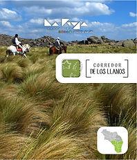 005 Link Corredor de Los Llanos.jpg